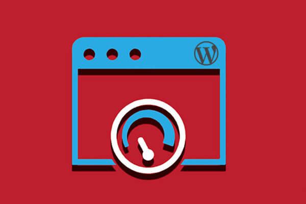 پلاگین برای بهبود سرعت سایت وردپرس