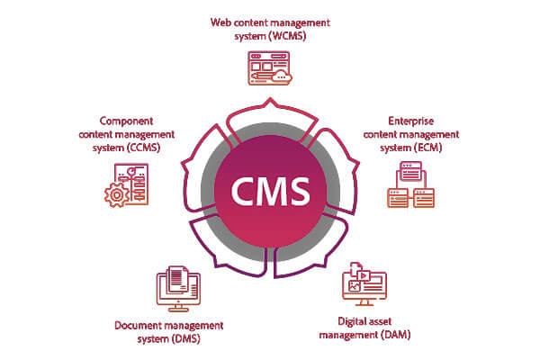 cms یا سیستم مدیریت محتوا چیست