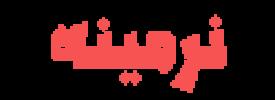 طراحی سایت نرمینه مبل